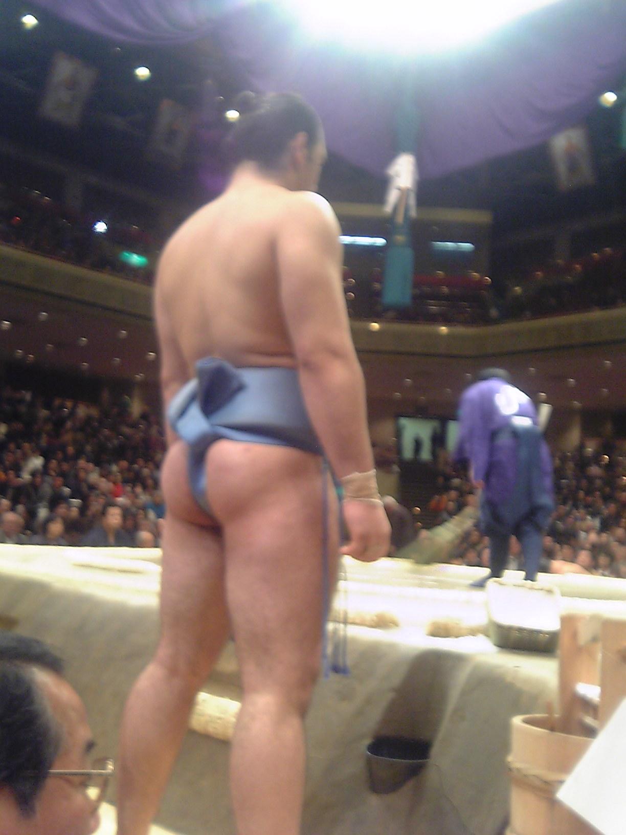 似て非なる将棋連盟と相撲協会