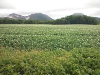43年ぶりに観光した北海道の知床半島と摩周湖の絶景