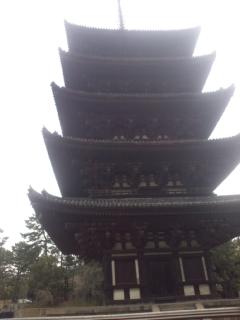 3月に奈良の法隆寺、東大寺、興福寺などを観光